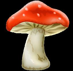 Mushroom for Wonderland Tea party at The Artful Fairy