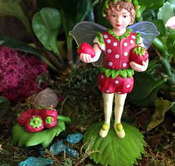 Flower Fairies Secret Garden Collection is here!