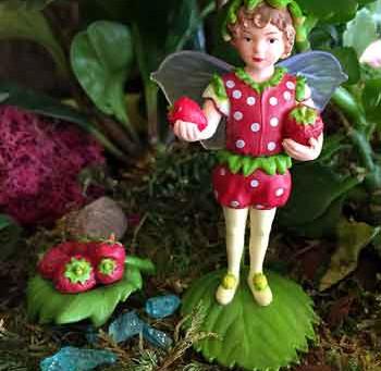 Flower Fairies Secret Garden Collection is here!