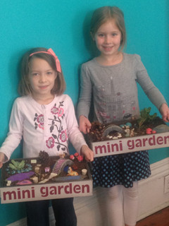 Darling Mini Gardens