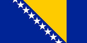 Bosnia Cricket