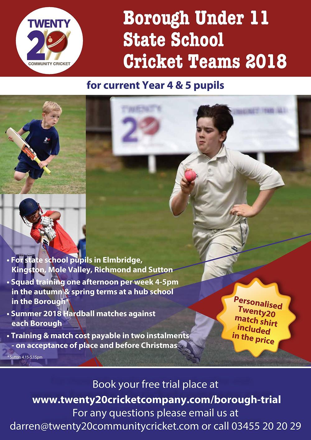 Twenty20 Borough Cricket Academies