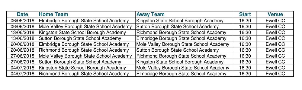 Surrey Borough State School Cricket Academies