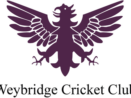 Spring junior training starts at Weybridge Cricket Club