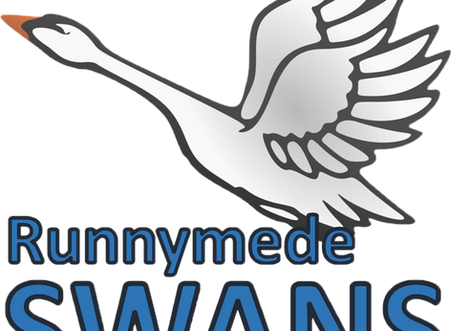 Meet the Runnymede Swans