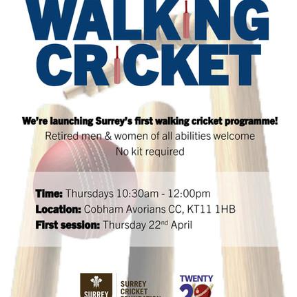 Walking Cricket - The Benefits