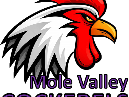 Meet the Mole Valley Cockerels
