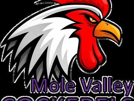 Meet the Mole Valley Cockerels