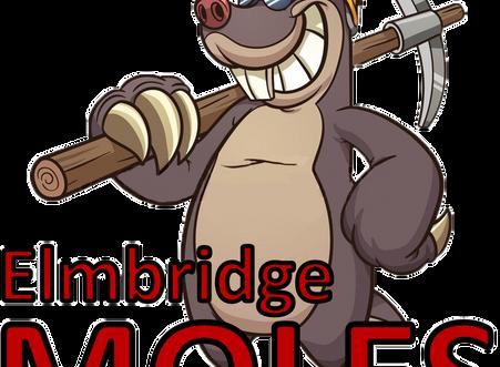 Meet the Elmbridge Moles