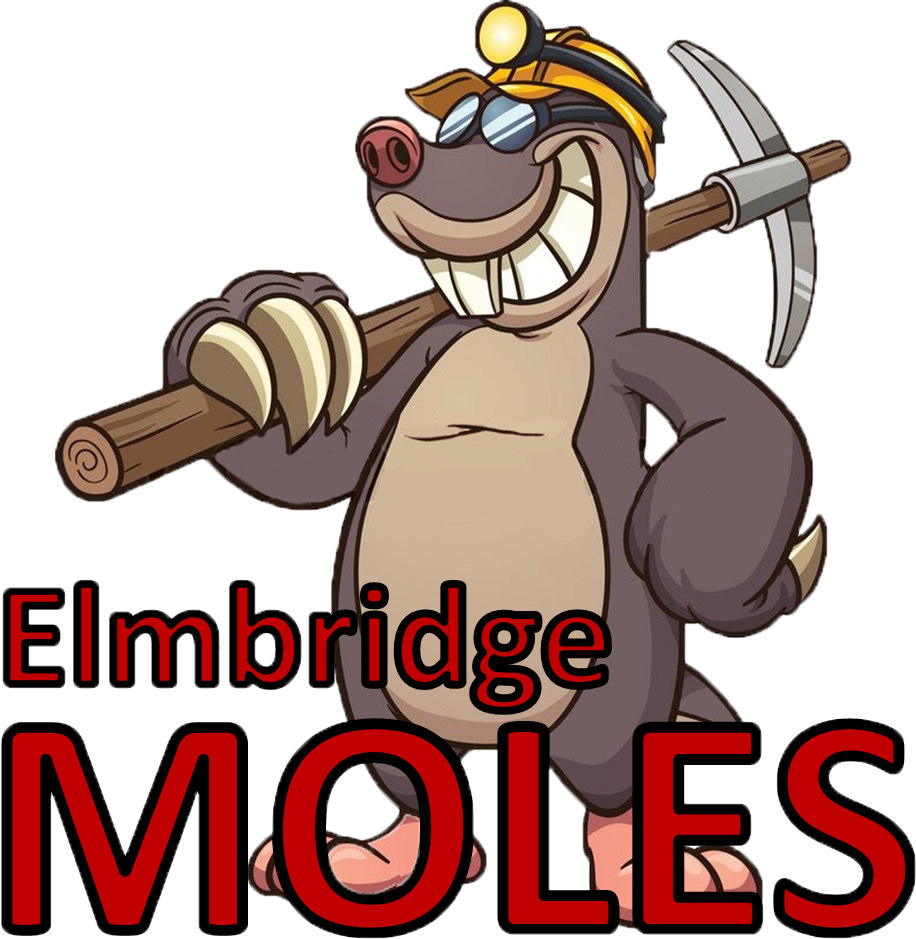 Elmbridge Moles Surrey Slam Schools squad