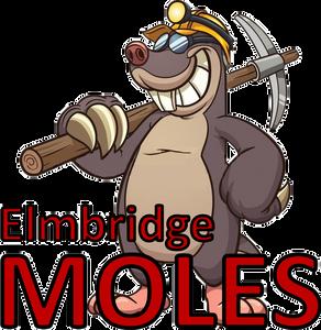 Elmbridge Moles Surrey Slam Schools squad