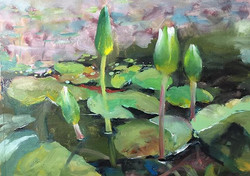 花苞_Lotus calyx_oil on canvas _24x33cm