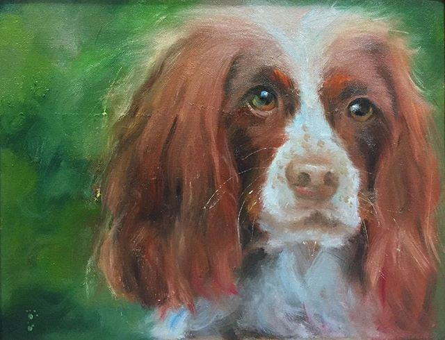 望著_Dog_oil on canvas _23x34cm