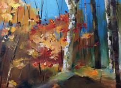 楓紅_Maple red_Oil on canvas _34x33cm