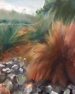 火芒草_Miscanthus_Oil on canvas _23x34cm