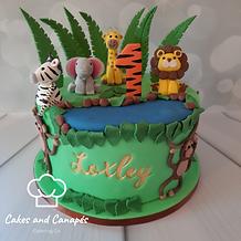 Safari Cake.png