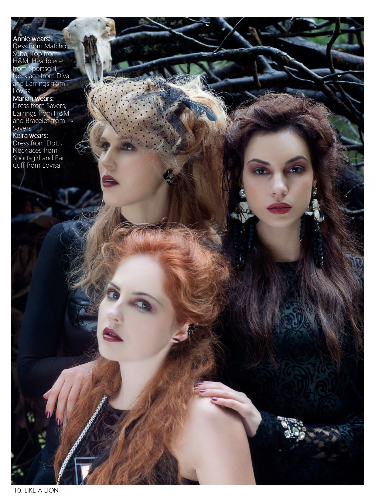 Like a Lion Magazine June 2014
