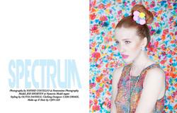 CoCo Magazine Issue 19