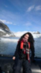 Studying Glacier and sea ice in the zodi