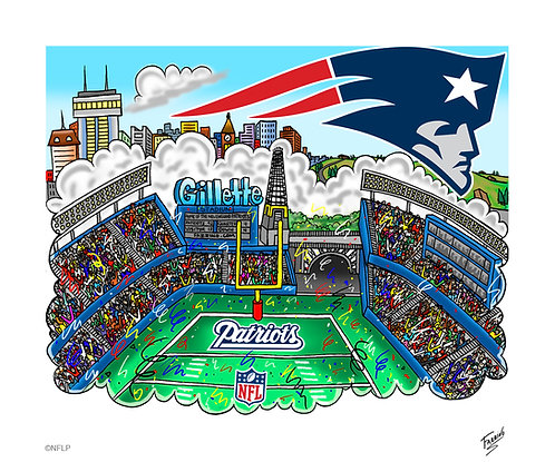 New England Patriots 3-D Mini Print