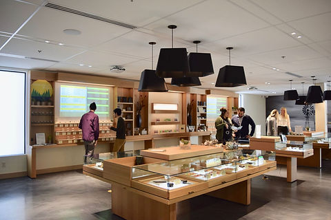Harvest_Scottsdale_Dispensary_With_Patients.jpg