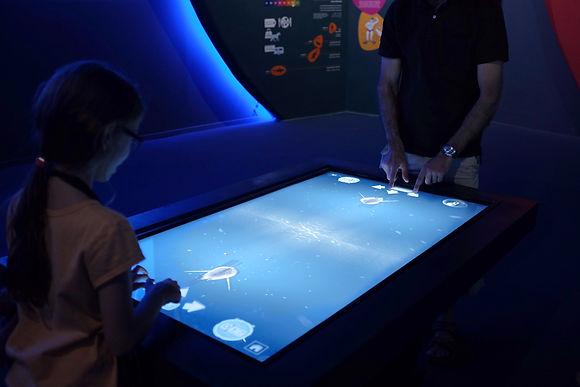 aquarium interactives