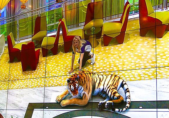 AR Zoo