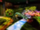 floor projector games