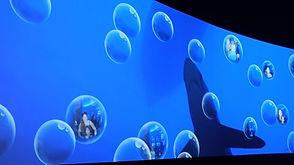 SW-Bubbles.jpg