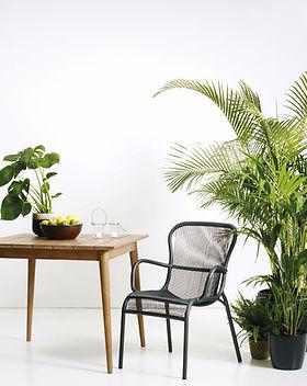 Loop_Dining_Chair.jpg