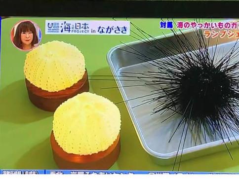 """長崎テレビの""""よじまる""""出演"""