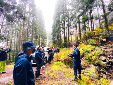 八女ファミリー林業への視察
