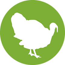 LibertyBurger-site_icons-turkey.png