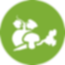 LibertyBurger-site_icons-veggie.png