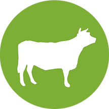 LibertyBurger-site_icons-Beef.png