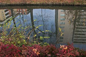 Canal-Miroir (11).jpg