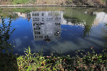 Canal-Miroir (9).jpg