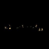 smartwool-logo-png-transparent.png