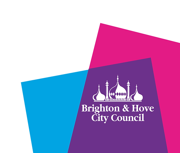 brighton-and-hove-council.png