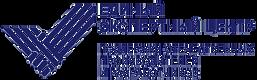 Лого светлый синий png 2.png