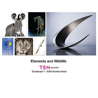 ten-gallery-poster-element & wildlife.jp