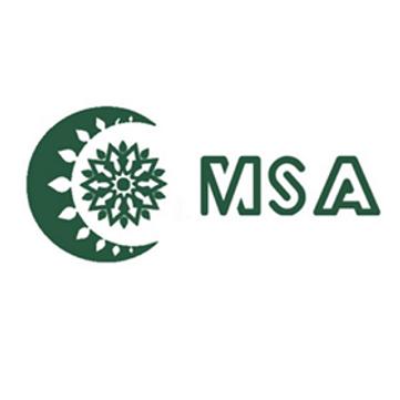 MSA.png