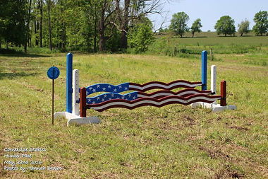 Custome made american flag plank triple: $625 for the whole set