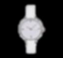 FRC6621-BLANC.png