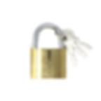 FRC6073_lock-cadenas.png