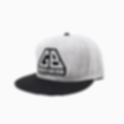 Snapback-4---Gris.png