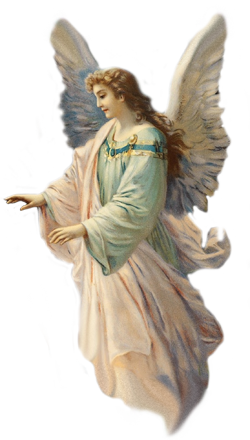 angel_PNG25.png
