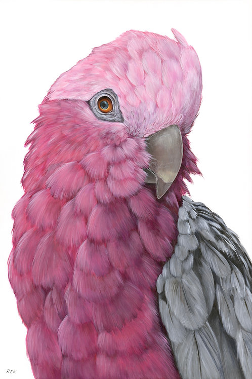 Pretty In Pink - Ed of 50 per stock size