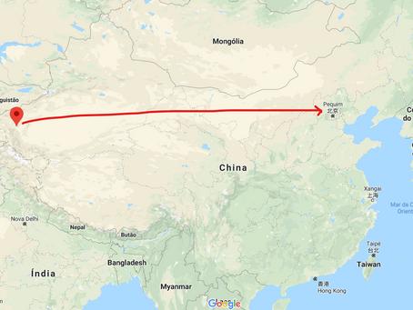 Vencedores da pandemia, a cadeia logística fria chinesa