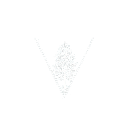 Tree%20png_edited.png